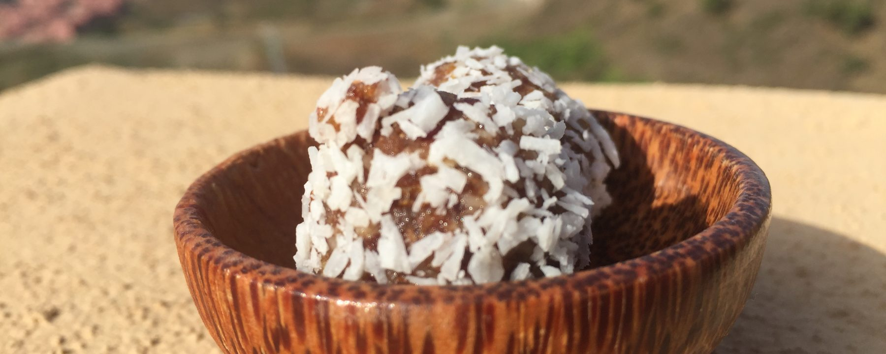 Cocos-Balls Viogan